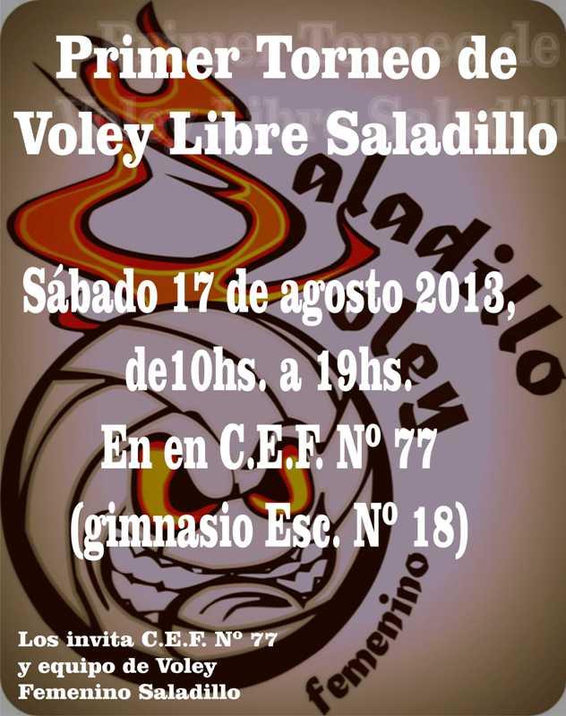 130813 1encuentro volSaladilo2013