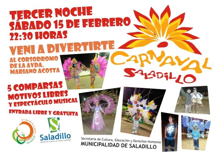 140213 carnaval15febrero