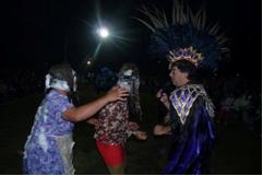 140305 Carnaval Polvaredas Fenix 2