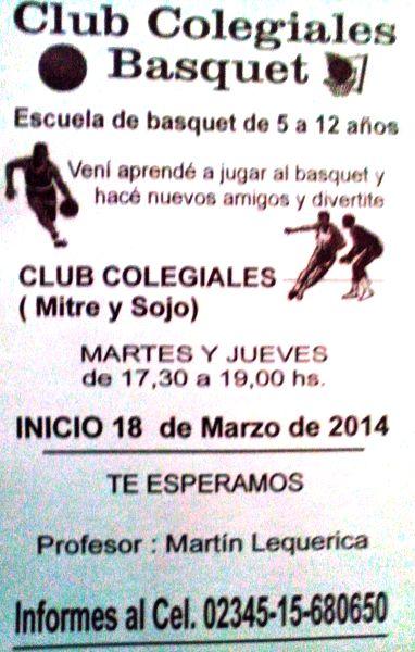 140321 Basquet Colegiales
