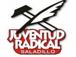 Juventud radical 2012